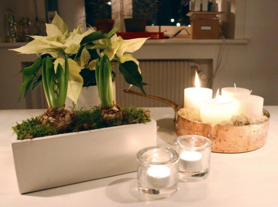 tända adventsljus, hyacinter och vit julstjärna