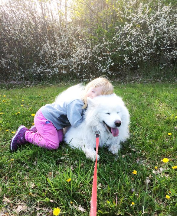 barn och hund